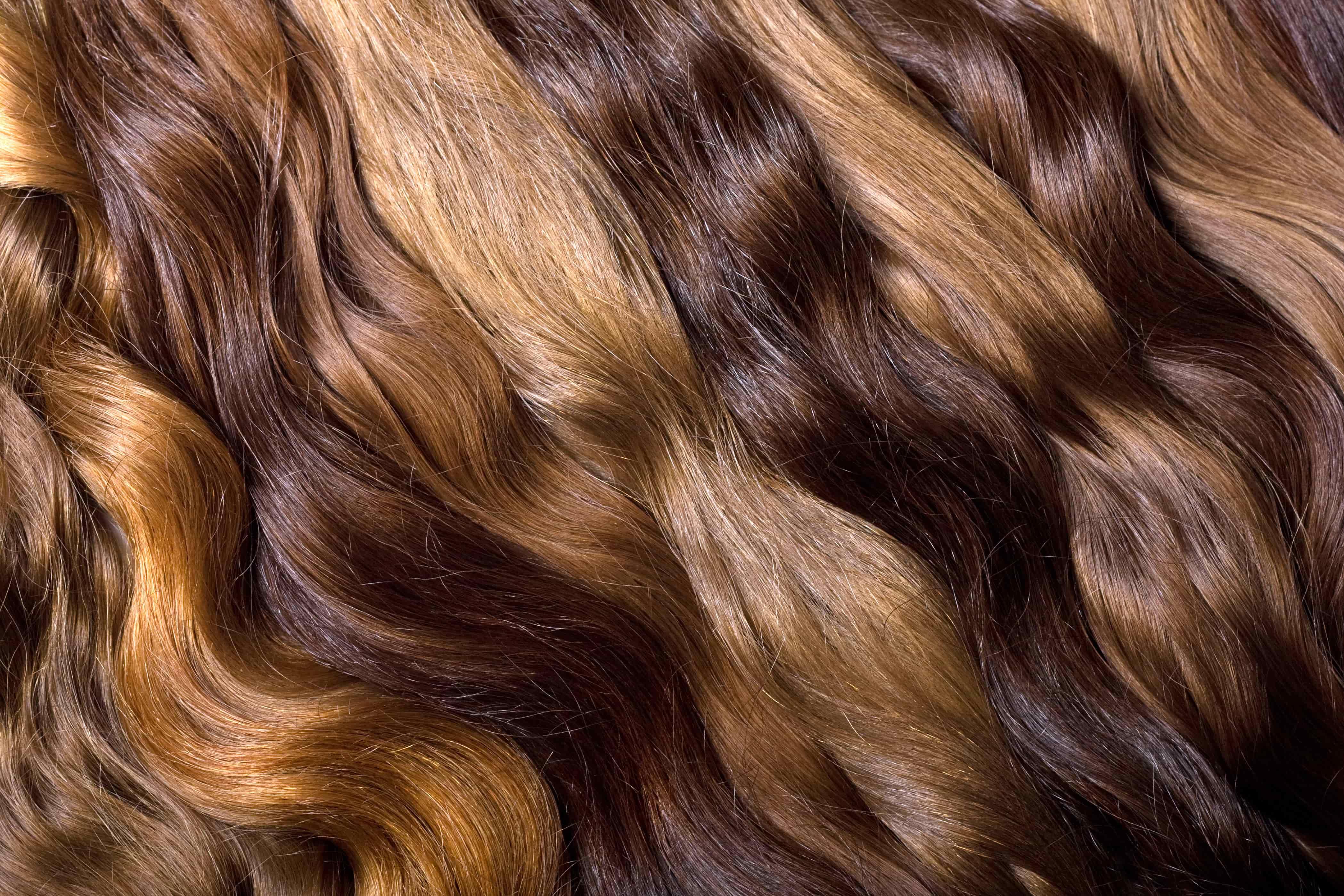色々なカラーの髪の毛