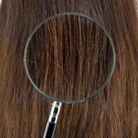 髪は何でできている?髪の毛の成分と毛根の仕組み