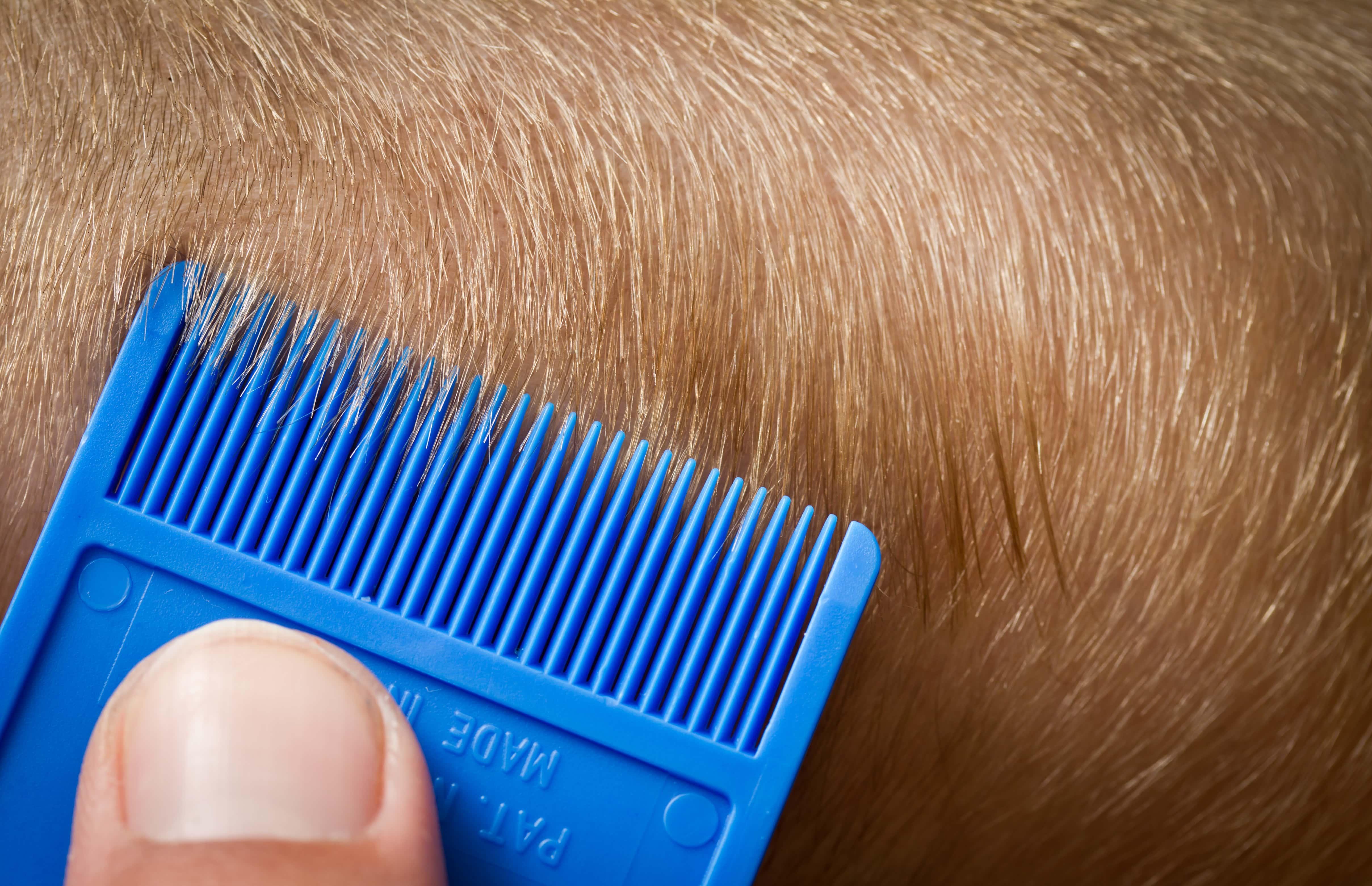 櫛で短い髪を梳く