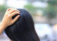 頭皮マッサージの正しいやり方をご紹介!育毛に効果はあるの?
