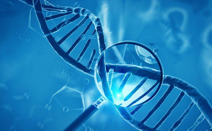 遺伝的要因