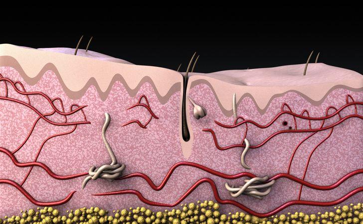 毛根が黒く変色する原因
